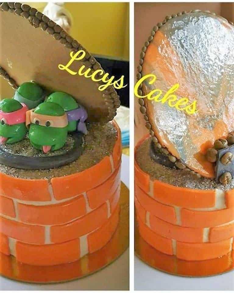Lucys Cakes & Crumbs - Ninja Turtle